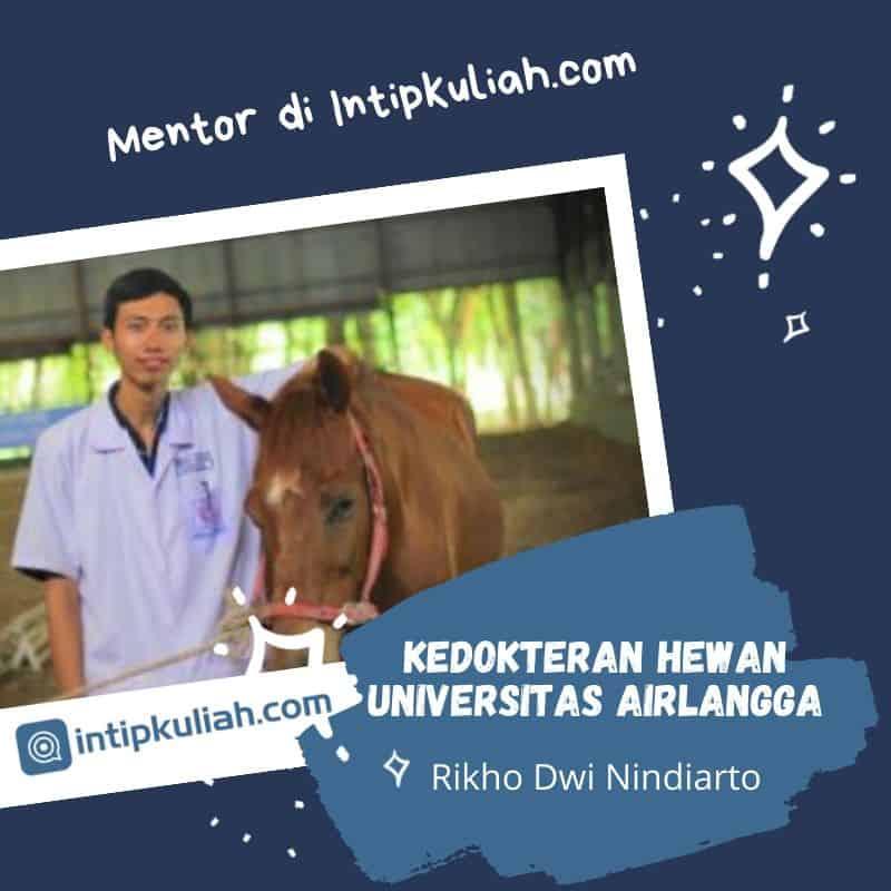 Kedokteran Hewan Unair / Universitas Airlangga (Rikho)