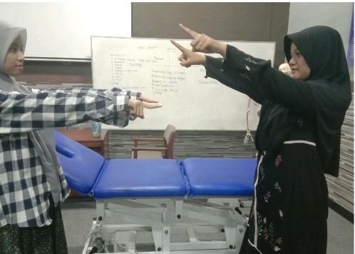 fisioterapi ums