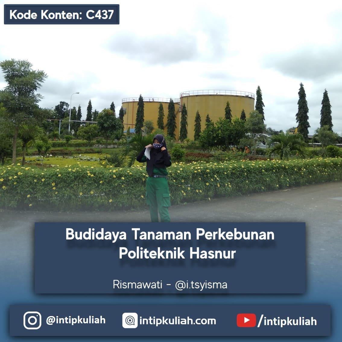 Budidaya Tanaman Perkebunan Politeknik Hasnur (Risma)